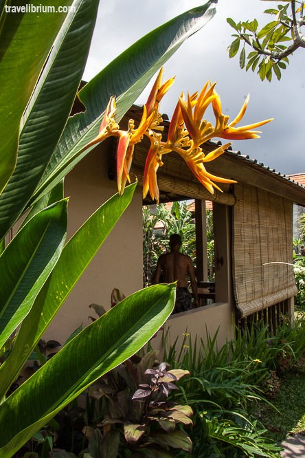 house-in-ubud-22